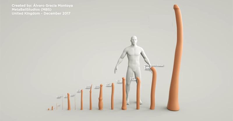 人類VS動物界「巨根大比拚」!「牠GG比人類身高還高」鄉民30公分被屌打慘輸