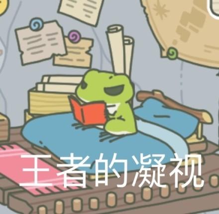 養蛙風潮持續延燒,製作人打臉網友「牠才不是蛙兒子」而是......