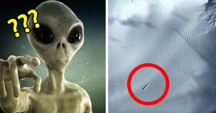 南極洲驚現「外星人巨型GG」噴射長度超狂,專家「拉近一看」爆:它體積比較大