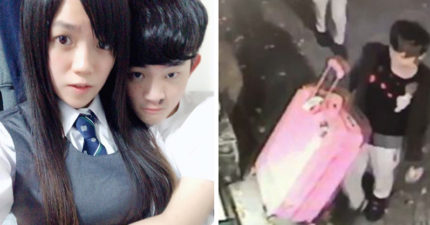 港女案關鍵證物「28寸裝屍粉色行李箱」至今仍找不到!警方:恐被人撿走流入網拍