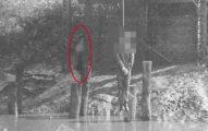 街友被活活打死「腐肉吊在河前」!木屋旁「幽怨身影狠盯他」讓真相曝光:她就是被抽插17天的屍體...(無碼慎入)