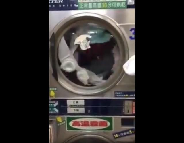 自助洗衣機「色色亮點」讓全網不敢直視,「12秒滾滾害羞影片」網友:求主人心理陰影面積 (影片)