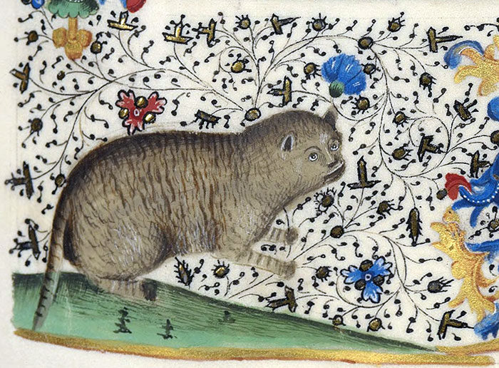30張讓人見識到古人「根本完全不會畫貓」的超爆笑貓咪藝術作品