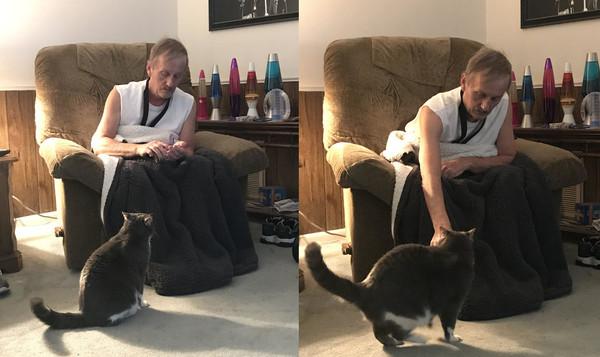 爸爸休克倒地...冷淡貓瘋狂呼喚全家起床「救他一命」 媽:我終於知道他為什麼那麼兇了
