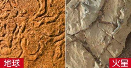 「就知道火星有生物」!科學家發現NASA掩飾「火星生命」關鍵證據,歐洲太空總署也看不下去