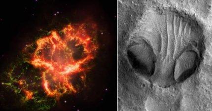 為何一直「找不到外星人」?科學家最新發現:不可能有外星生物!