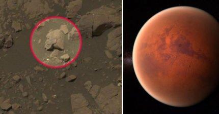 火星人存在鐵證!火星上驚見「神秘女戰士雕刻」 科學家解釋了