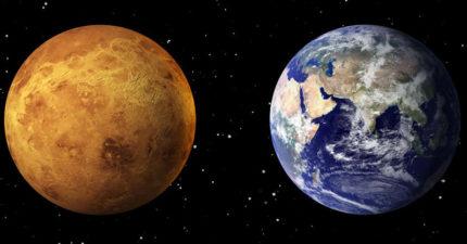 金星大氣層可能有「外星生命」!NASA科學家:環境和地球很像