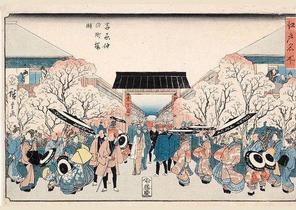 為何日本文化中「櫻花」這麼重要?日本人愛的本來是「梅花」,直到有一天櫻花以「最淒美象徵」震撼了所有日本人的心