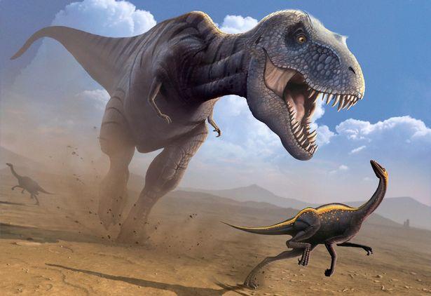 驚現1億年前「霸王龍祖先」腳印!專家證「恐龍不只活在陸地」:世界霸主的開始