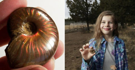 7歲妹不想看姐姐足球賽 場邊一挖「驚世石頭」直接變百萬富翁