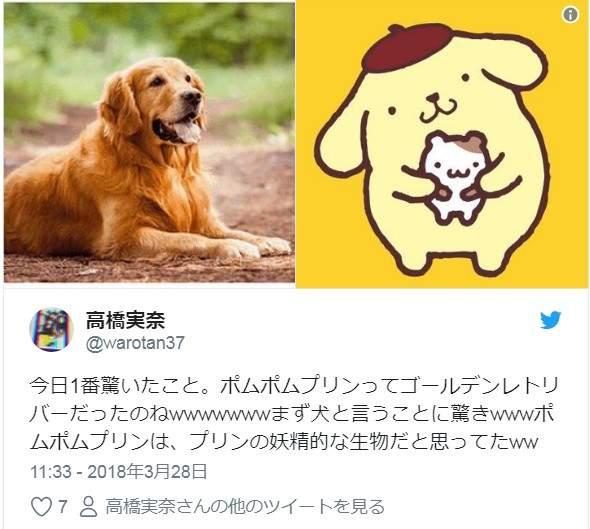 布丁狗不是布丁!日本網友知道「布丁狗真實身份」後超崩潰,但其實「中文譯名」已經把謎底說出來了