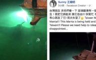 丟臉!澎湖漁民抓到「國際保育鬼蝠魟」 船上爭吵賣多少錢「4小時後牠沉入海底」