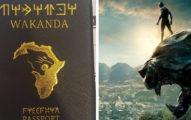 黑豹真的存在?他機場驚見「瓦干達護照」 網激喊:我要移民!