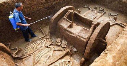10項破土純屬意外「重大考古發現」 哈比人真的存在