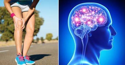 走路是人類最好的藥!10個會讓你從明天開始走路上班「每天走路的好處」