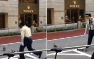 日警無車街道指揮交通 低頭一看原來是護送「鴨媽帶小鴨」萌翻!