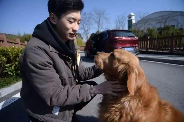 他「散盡家產」買下待宰黃金獵犬 狗兒獲救狂追車:謝謝你