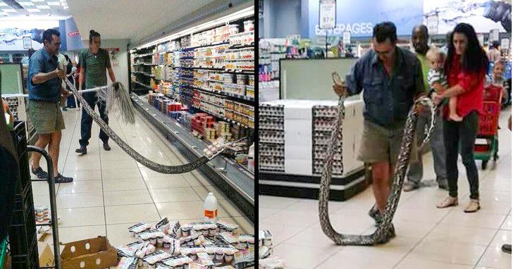 28個「發生機率有夠低」的怪事 超市出現「4公尺大蛇」太誇張