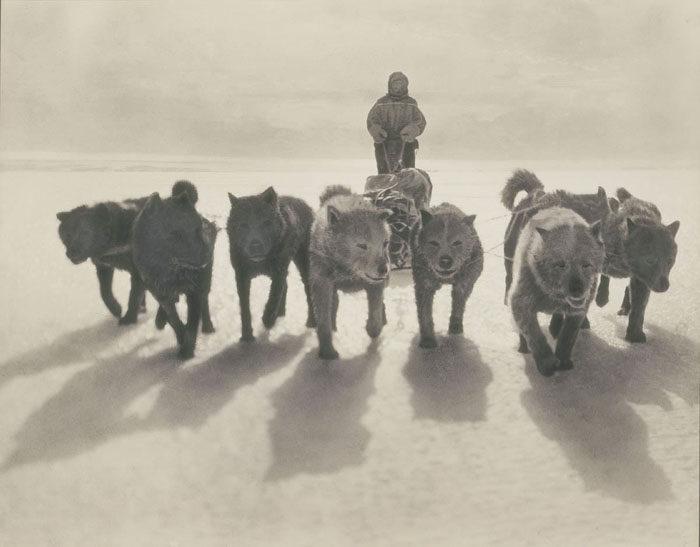 一百年前澳洲首支「南极敢死队」图集 逼近死亡才能见证的美 -5afd4967ab1fb