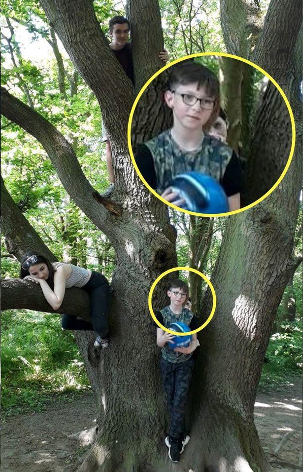 她兒子傻呆站樹幹前拍照 按快門下秒老媽崩潰:我看到「祂」的臉了...