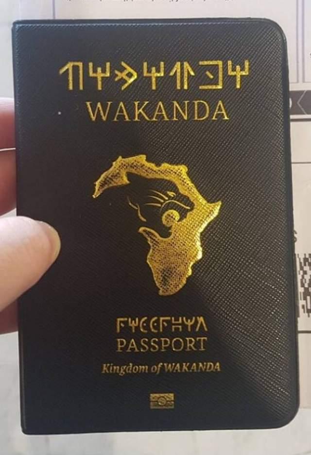 黑豹真的存在?他機場驚見「瓦干達護照」網激喊:我要移民!