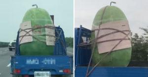 國道驚見「巨型西瓜水塔」橫行 被粗繩五花大綁要價6萬台幣!