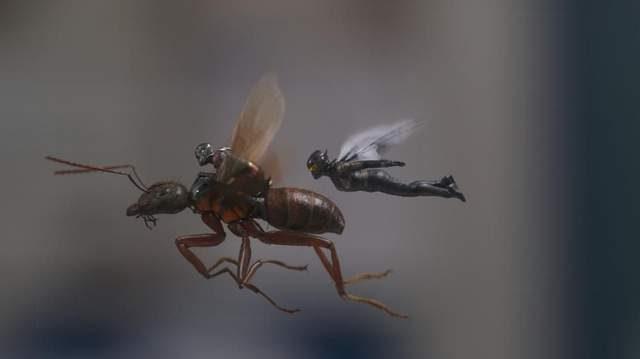 5大经典漫威英雄海报 你找得到蚁人、黄蜂女藏在哪吗? -5b1f3e8841c3a