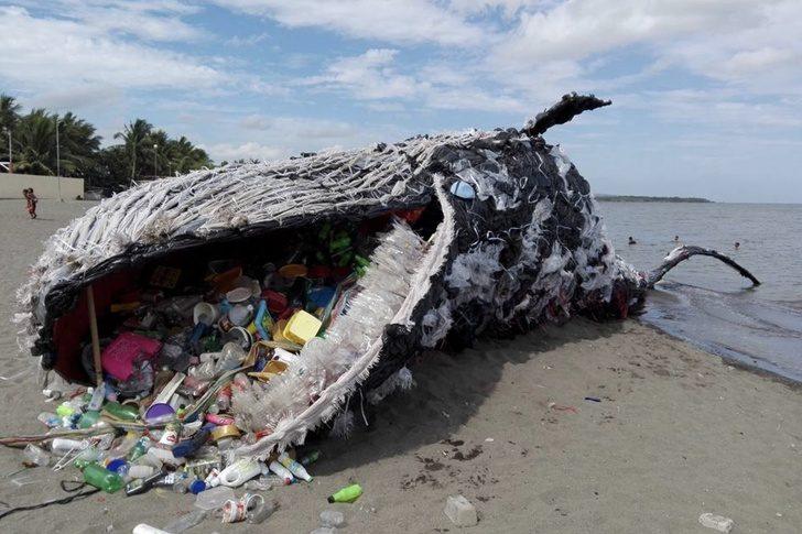 14张「大自然被燃烧殆尽」照片 鲸鱼嘴巴变成人类大型垃圾桶…心好痛! -5b20e06ae9580