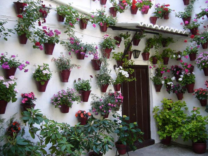 15個任由植物擁抱最後卻變「童話故事仙境」絕美景點