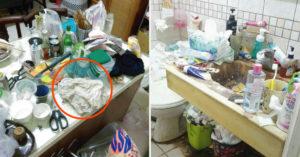 清潔員接辣妹訂單 豔遇變煉獄「超噁垃圾山」:小強至少500隻...