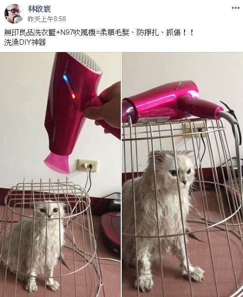 貓奴怕被攻擊準備「DIY洗澡神器」 喵皇屎臉:給本王把結界拿開!