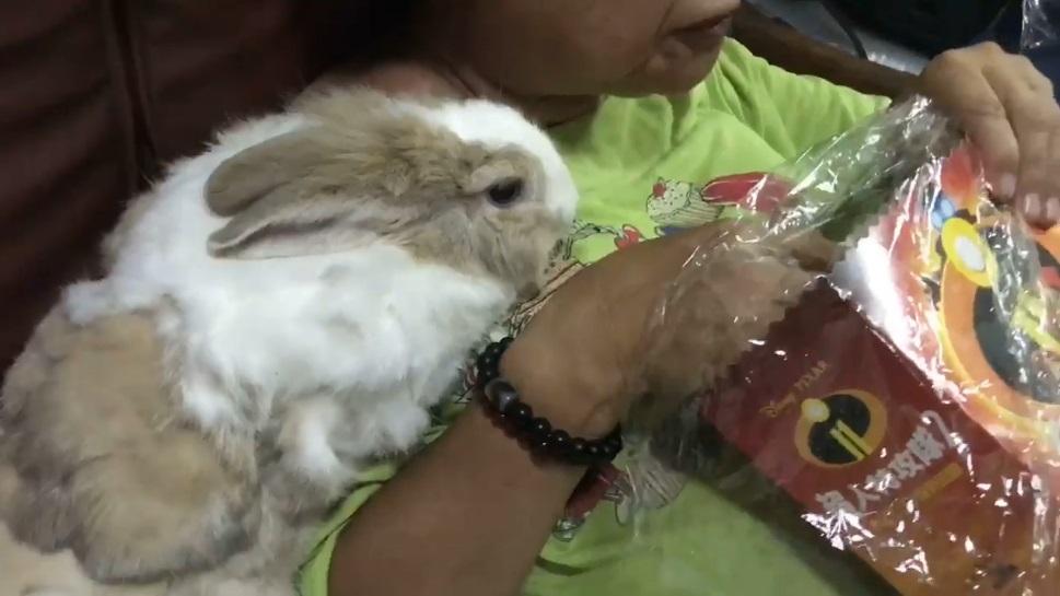 奶奶獨享爆米花豪爽 兔兔想吃卻被忽視:嘎拎祖嬤記住!