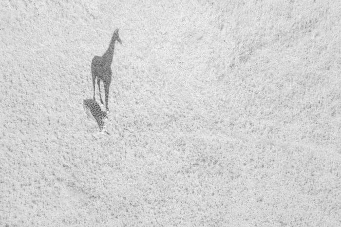 16張高空限定美景「2018年空拍機攝影大賽」得獎照