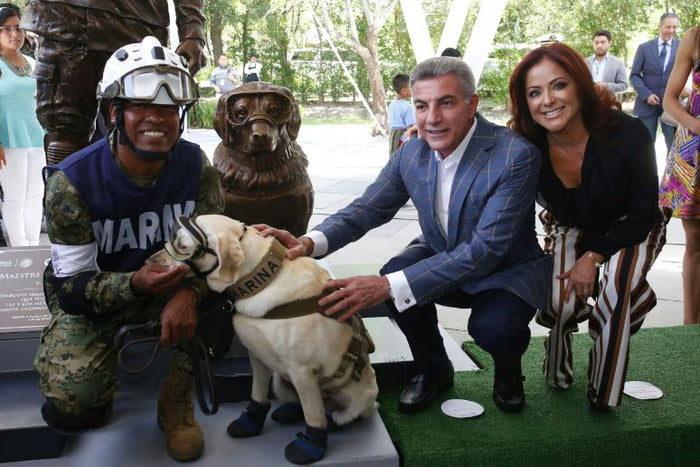 救出12條生命英雄搜救犬 看見自己紀念雕像「興奮上前親親」:本汪喜翻~