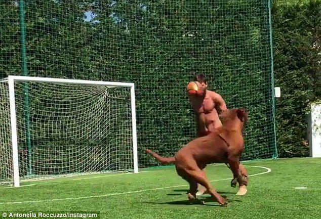 慘輸後療傷...梅西大秀「結實6塊肌」和狗狗練球 腳速快到狗狗都傻了:那什麼!