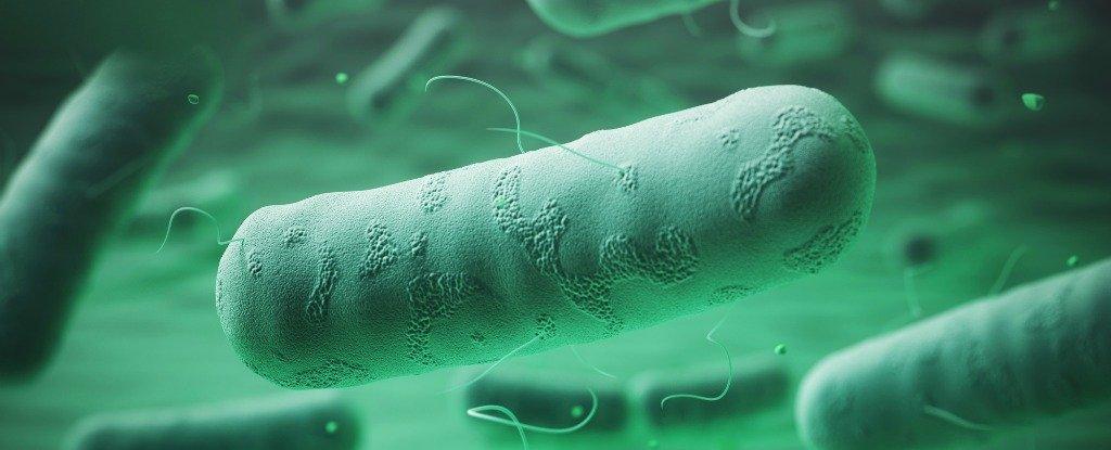 惡靈古堡真實版!醫院打破「結核菌樣本」 病毒蔓延秒撤整棟人類