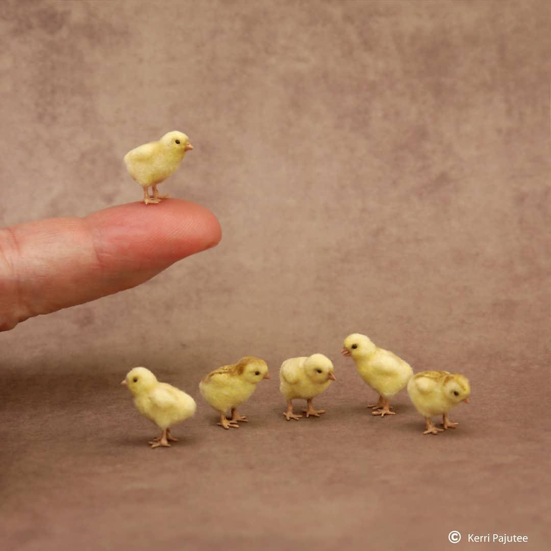 22個「不看比例分不出真假」微型動物雕塑 睡喵太萌♥