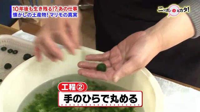 北海道必買紀念品「毬藻」 療癒圓球竟是俄羅斯產的「手搓奇行種湯圓」啦~