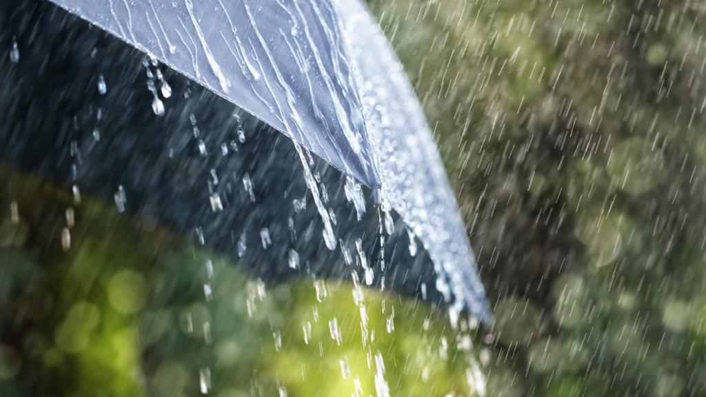 下雨總是有特別的味道?喜歡雨的味道一點都不文青 那是「細菌的體臭」!