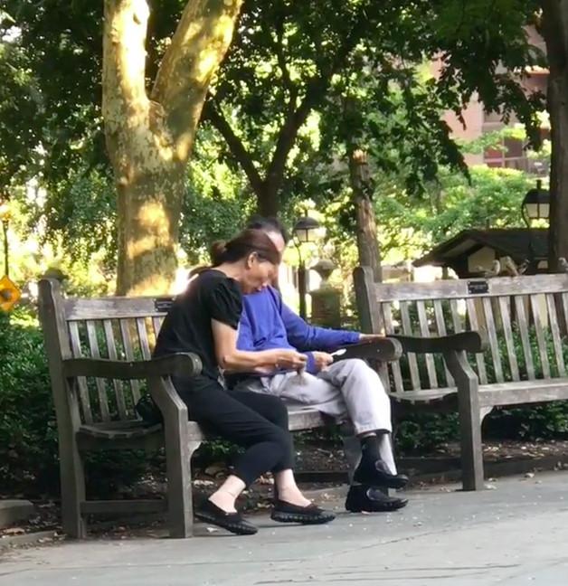 影/夫婦公園用麵包誘騙鳥 趁專心吃「快狠準一把抓」裝袋回家!