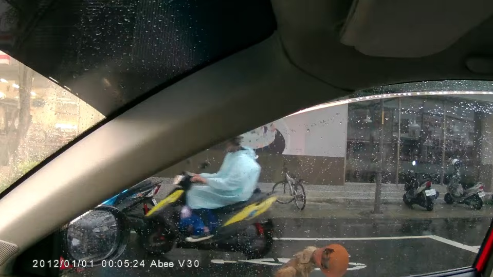 你是天使!白內障狗狗無助坐在路中央 女孩趕緊停車抱到路邊超有愛♥
