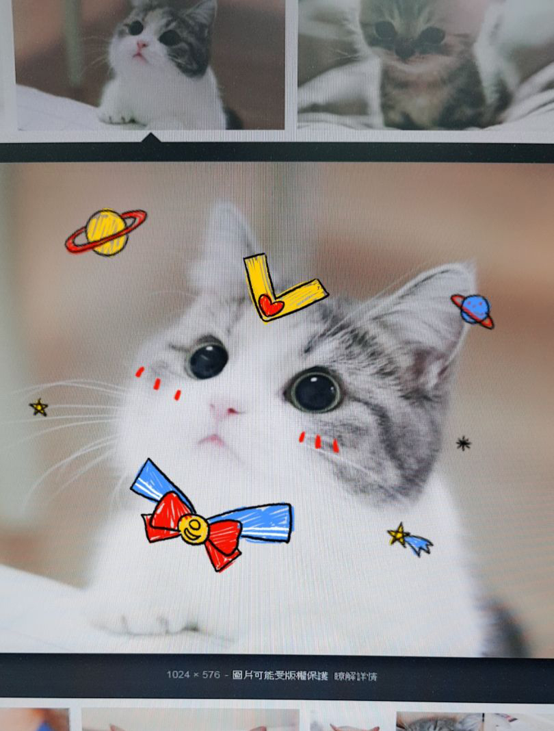貓狗萌度激增!美圖APP推「寵物AR特效」 臉紅紅流口水太可愛了♥