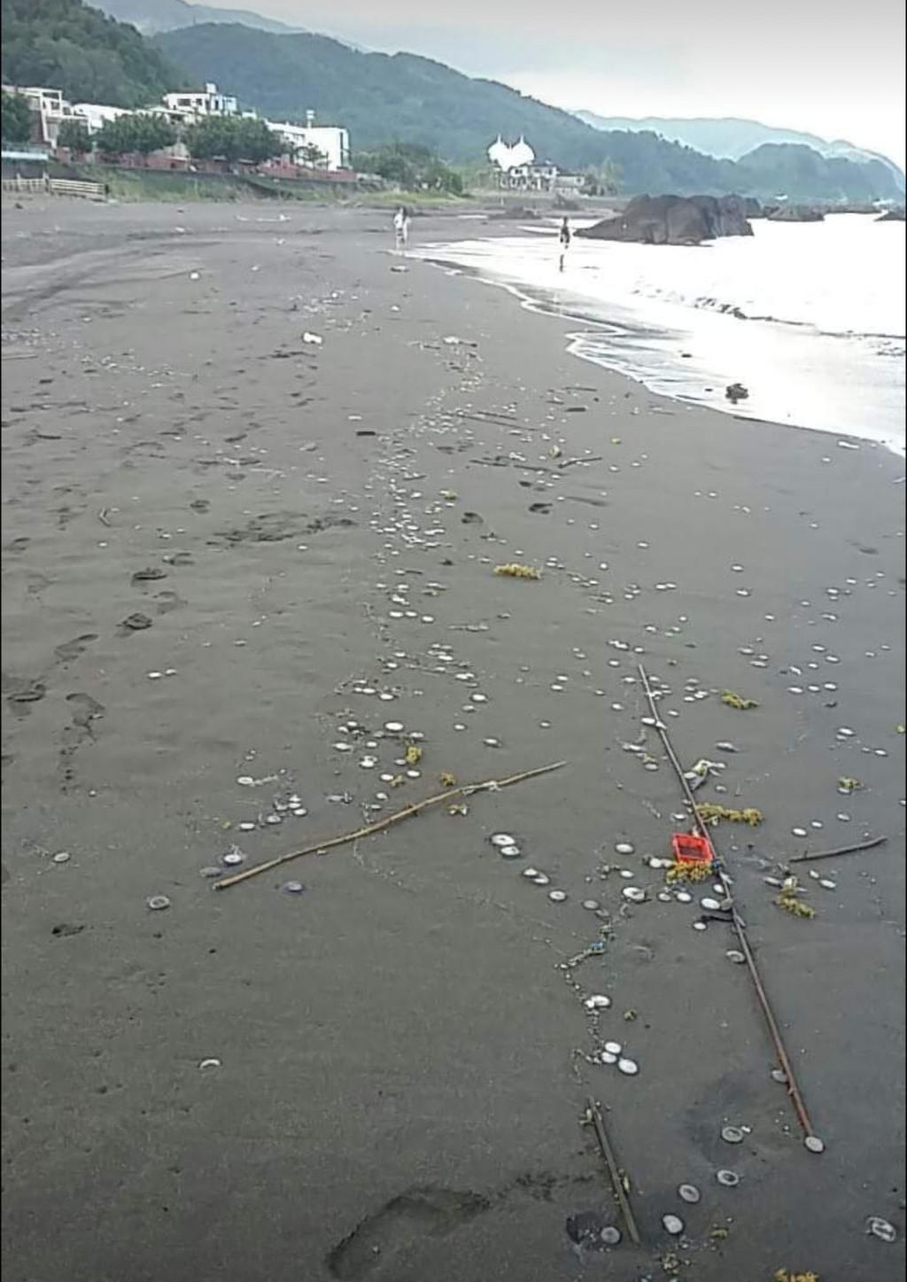 銅板別亂撿!海灘驚現大量「十元硬幣」 手癢亂撿包你秒送醫