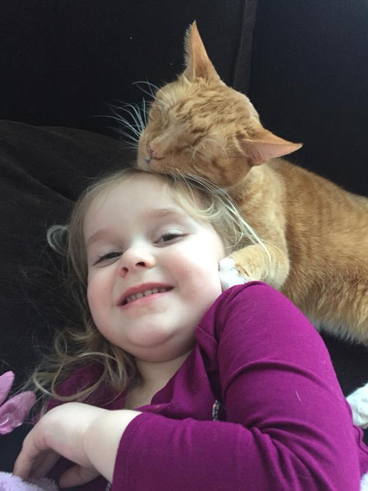 萌娃念故事給貓哥哥聽 「舒服瞇眼窩懷裡」:從前從前有一隻可愛的小貓咪~