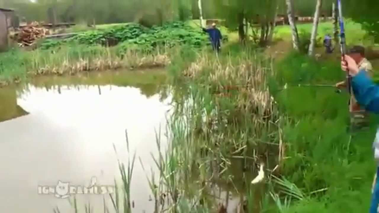 等好久終於釣到魚惹~ 一拉起來...聖上衝出來搶走後光速消失