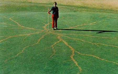 8張「被閃電擊中」留下的天然刺青 美麗樹枝圖騰是閻羅王給的紀念品!