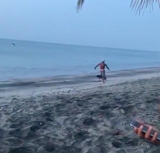 屁孩看到狗兒衝過去飛踢 下秒被「浪浪烙人狂追」嚇到跳海:好膽企跨賣~