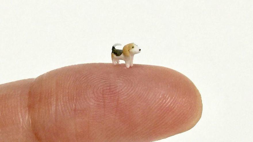 日本袖珍藝術家製作「5mm迷你動物」 可愛摺耳貓站在指間看了超療癒!