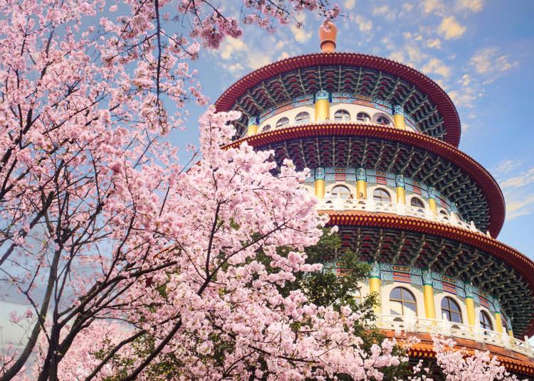 7個日本人眼中的「台灣遊客印象」 大讚台女妝容全世界都討喜!